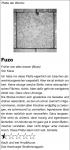 6_hinz--kunzt---plattenkritik-fuzo.jpg